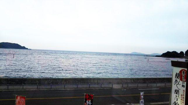 関アジ関サバ館カウンター席